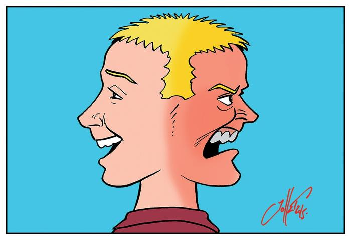 bipolarite